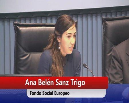 As subvencións como instrumentos de execución dos Fondos Europeos  - Os novos Fondos Europeos e a súa execución en España